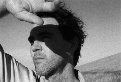 CASS McCOMBS, MEAT PUPPETS RELEASE 7-INCH, HIT ROUGH TRADE THIS WEEKEND